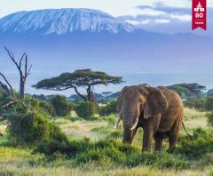The Fourth IBFD Africa Tax Symposium @ Sarova Whitesands Beach Resort | Mombasa | Mombasa County | Kenya